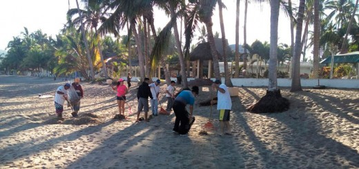 Riviera Nayarit Earth Day