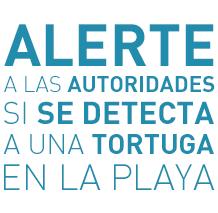 Alerte a las Autoridades - Liberaciones de Tortugas Marinas