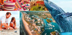 Lo mejor de Puerto Vallarta y Riviera Nayarit